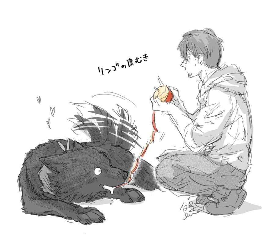 【特別なイヌ】ラストとマイル