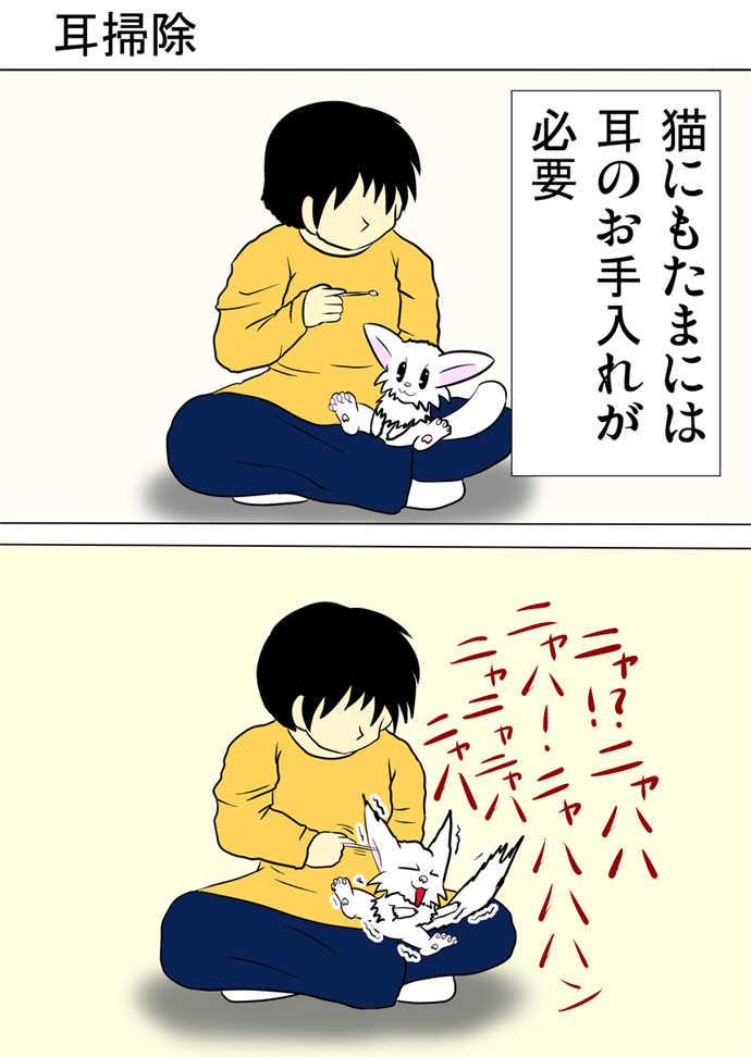 ミーのおもちゃ箱317話