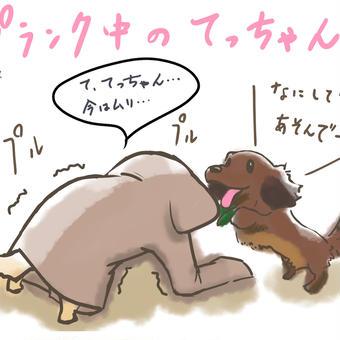 犬とリングフィットアドベンチャー①