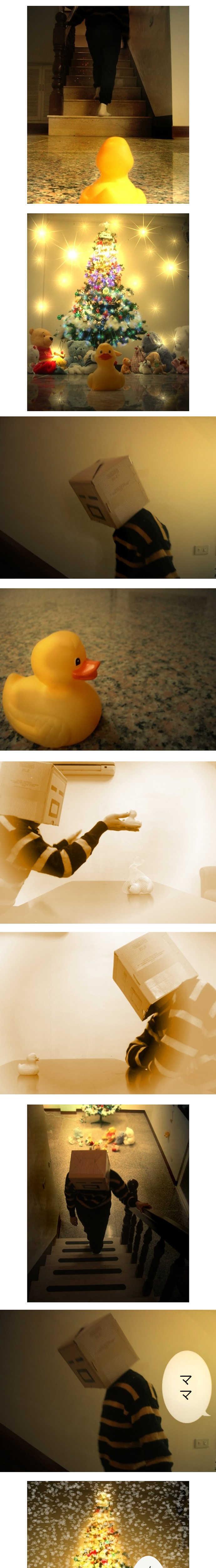 小鴨の母探し