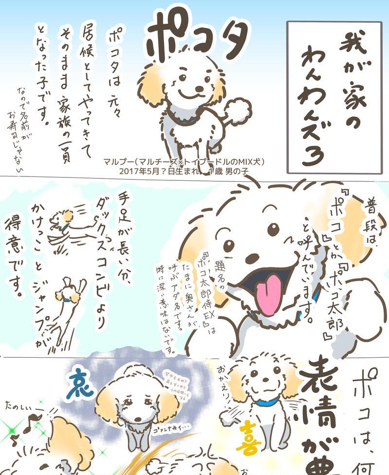 第3話「ポコ太郎侍EX」