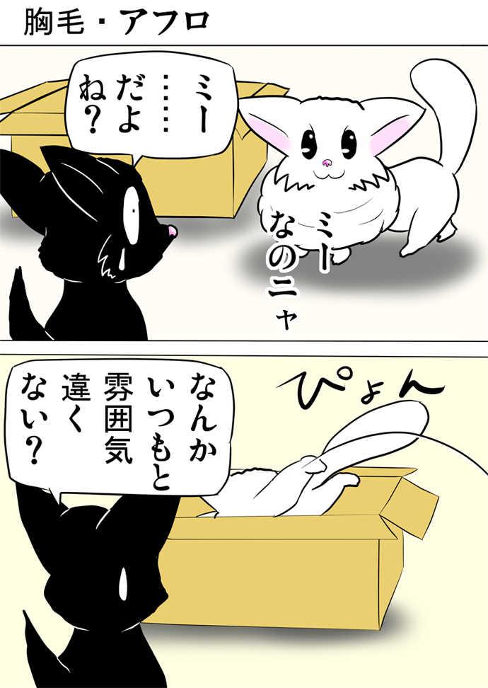 ミーのおもちゃ箱335話