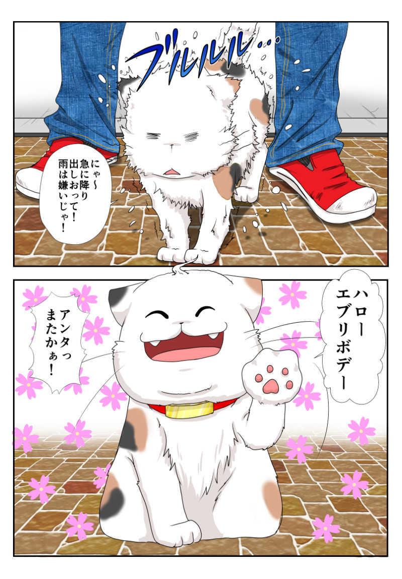 6話 猫以上猫又未満