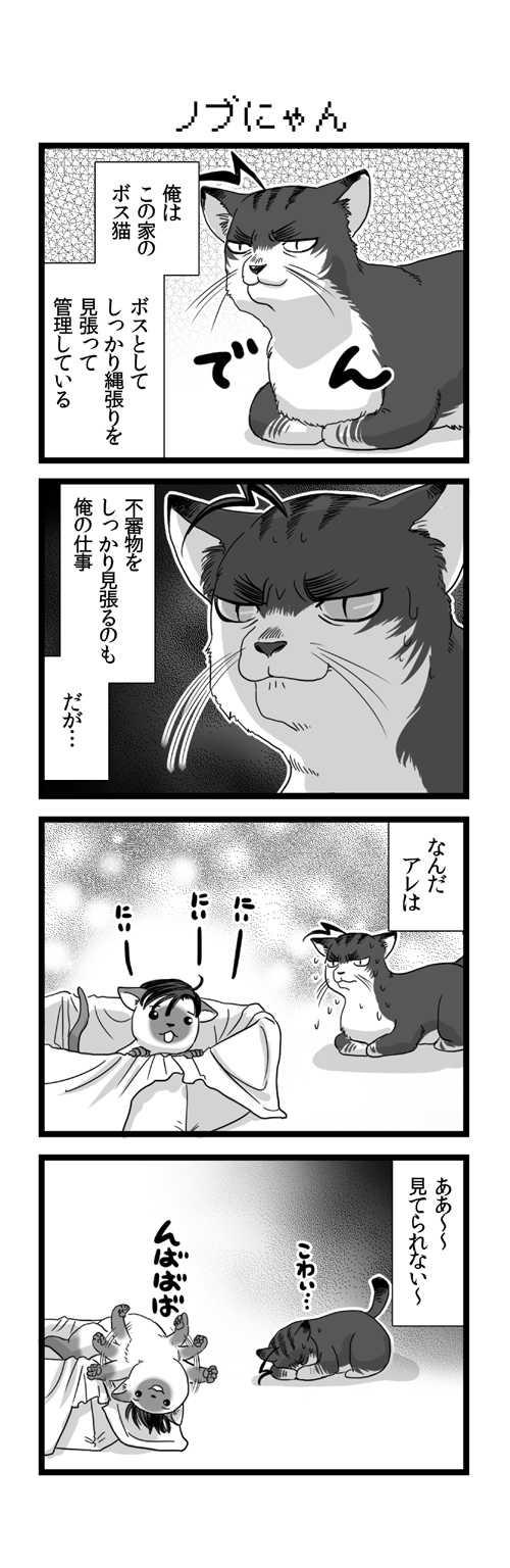 10:ネコの日編