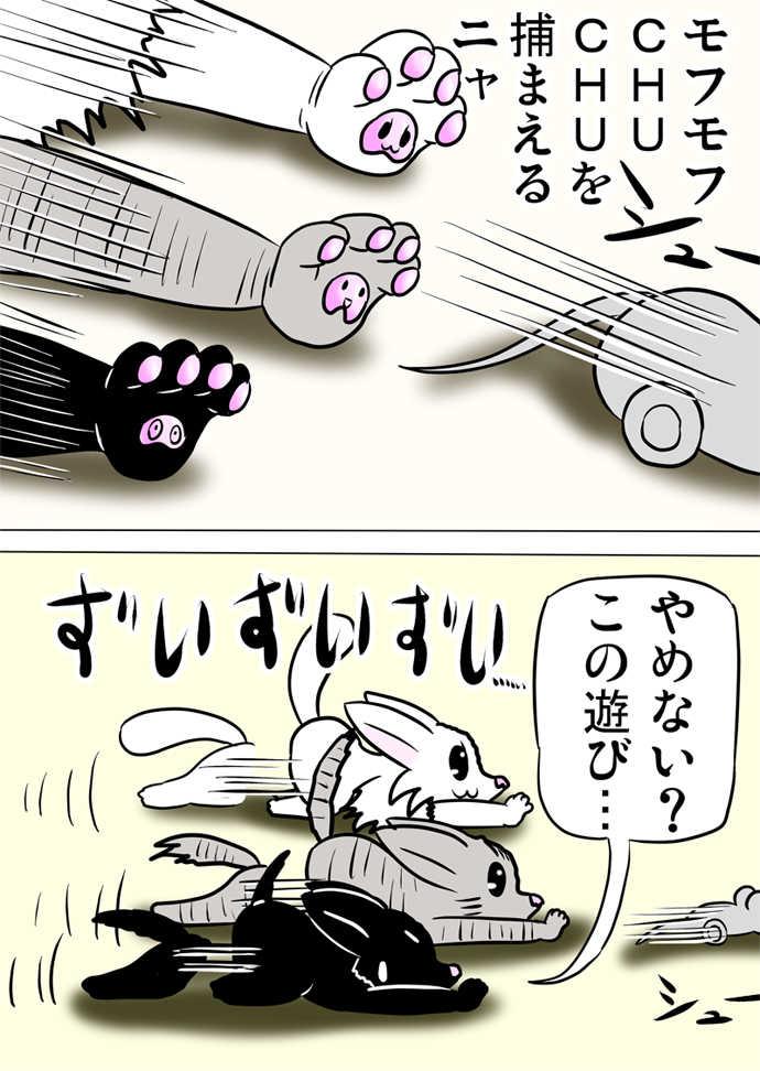 ミーのおもちゃ箱436話