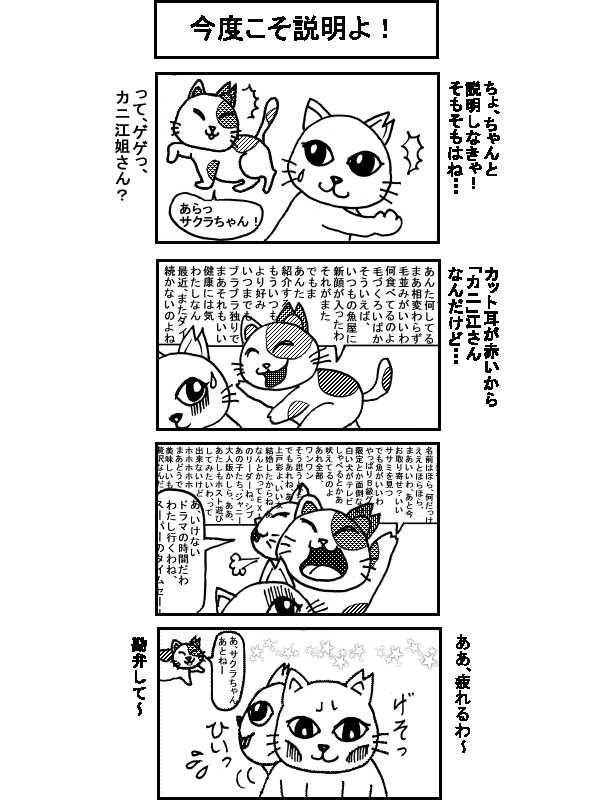 〇〇猫のなかまたち~サクラカット猫の日々
