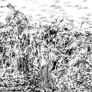福島県沖で起きた震度6強の地震の詳細情報を解説します!