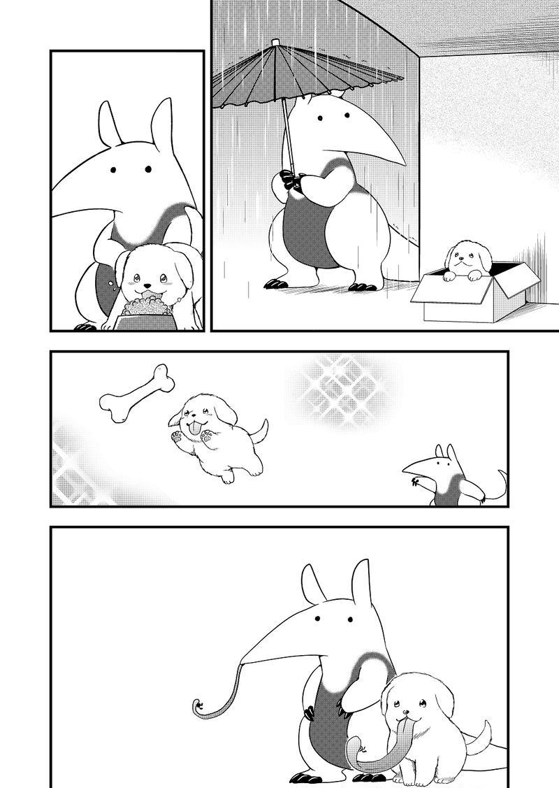 その14「仔犬とアリクイ」