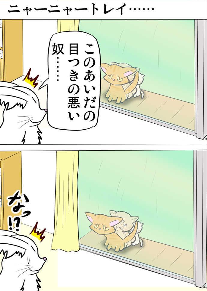ミーのおもちゃ箱519話~524話