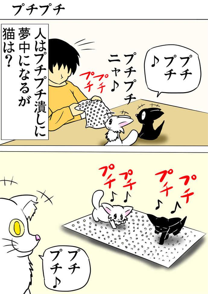 ミーのおもちゃ箱301話