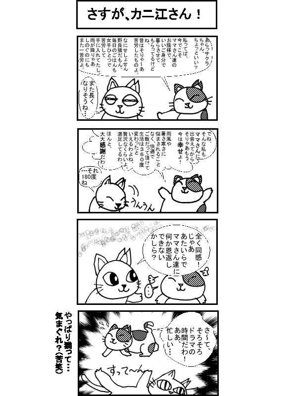 〇〇猫のなかまたち~サクラカットネコの日々 その2