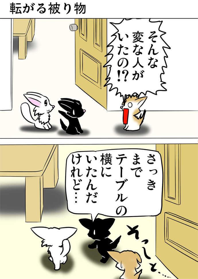 ミーのおもちゃ箱507話