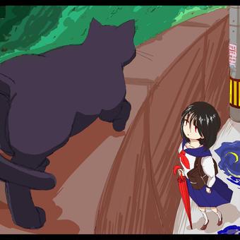黒猫が通り過ぎたら