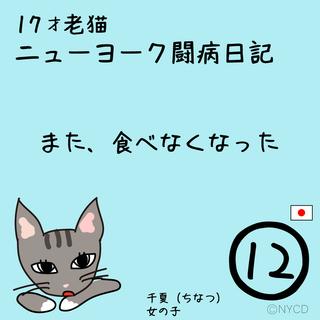 第12話 17才老猫 ニューヨーク闘病日記
