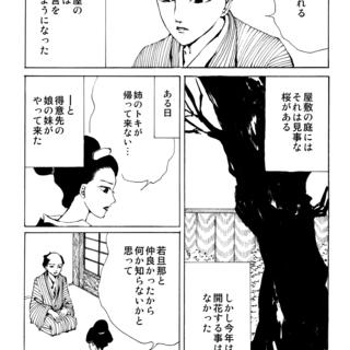 第八十二夜:遅咲きの桜の話