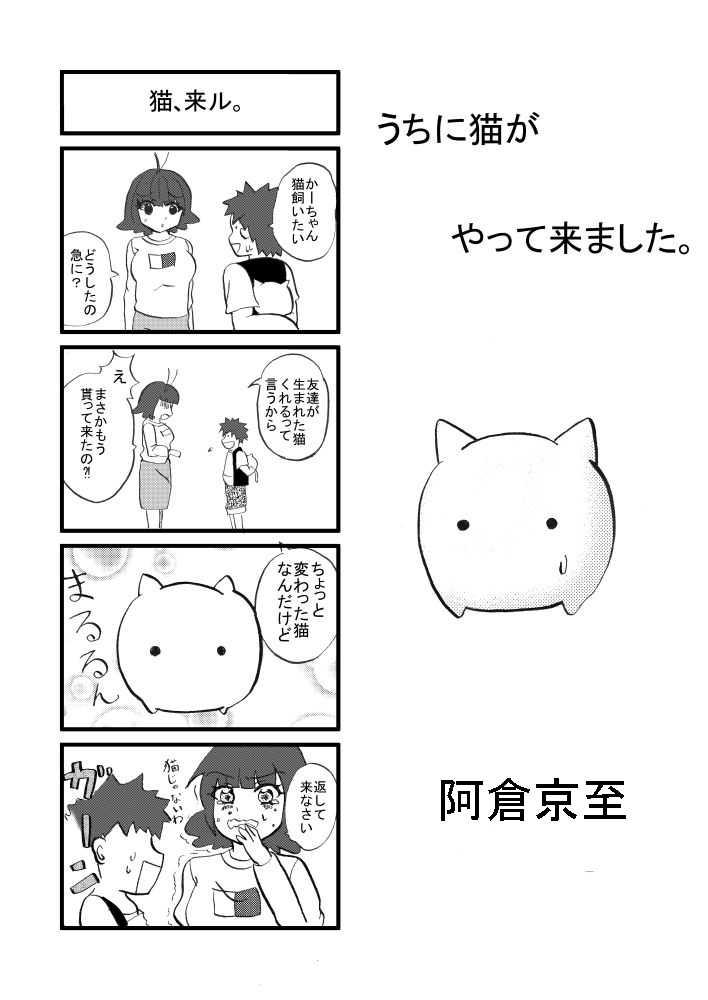 うちに猫がやって来ました。