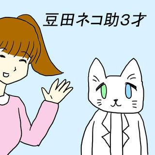 豆田ネコ助3才