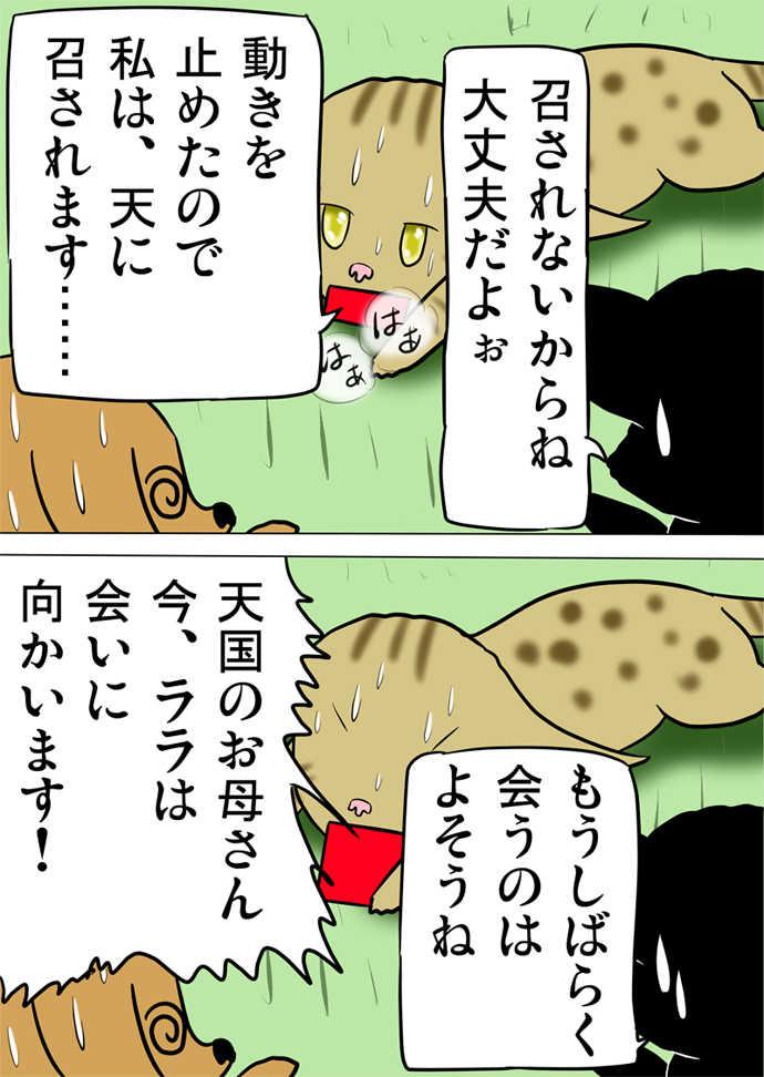 ミーのおもちゃ箱643話~第648話