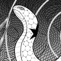 ホシバミヘビ(星喰蛇)