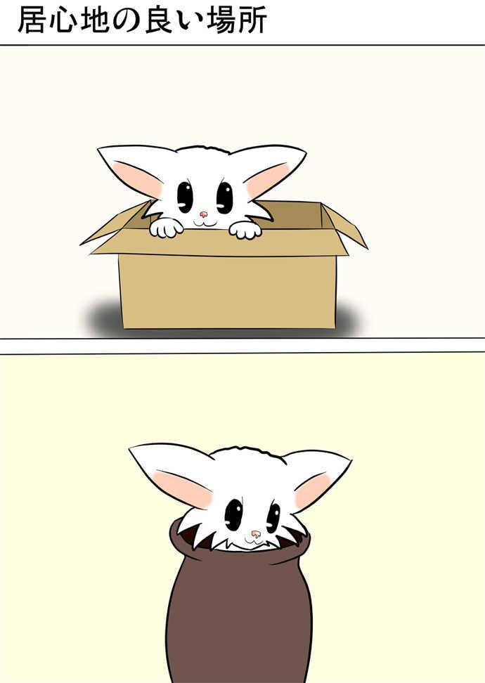 ミーのおもちゃ箱251話