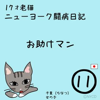 第11話 17才老猫 ニューヨーク闘病日記