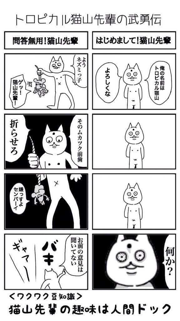 はじめまして!猫山先輩