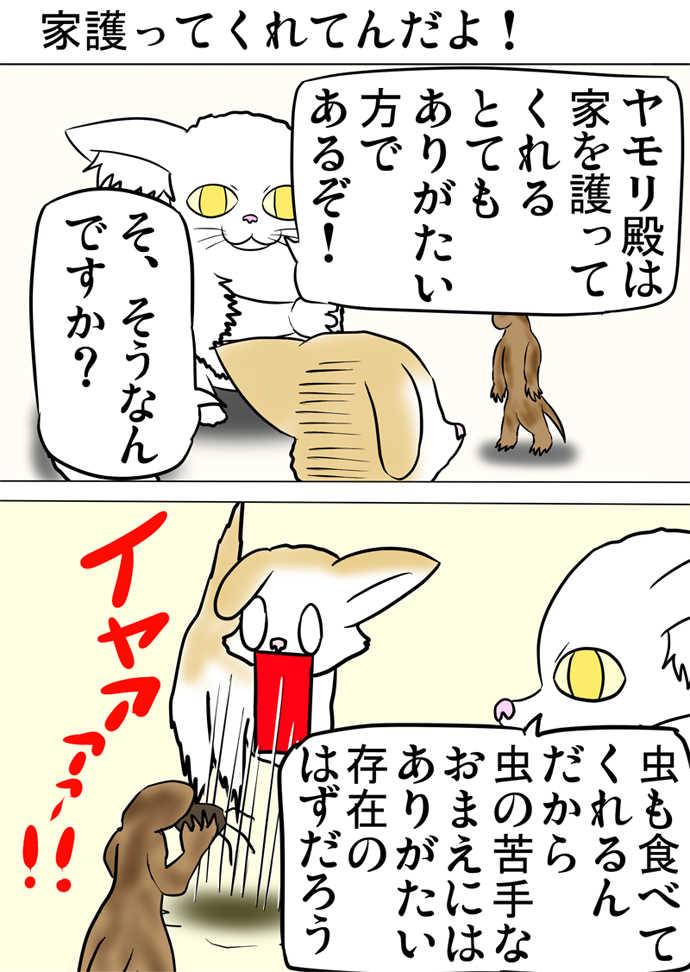 ミーのおもちゃ箱377話