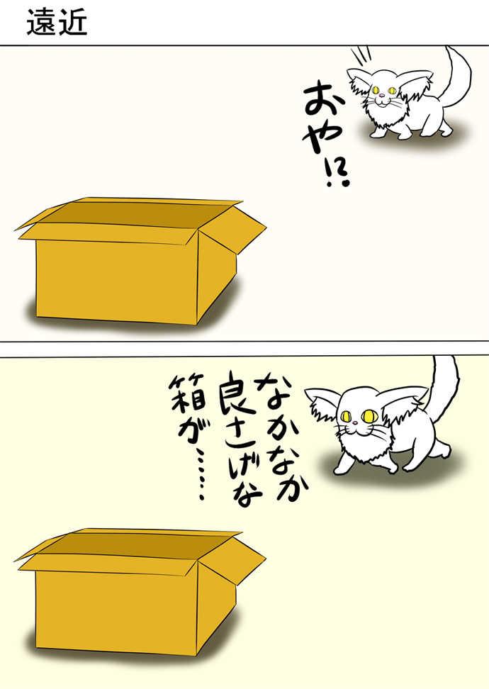 ミーのおもちゃ箱232話