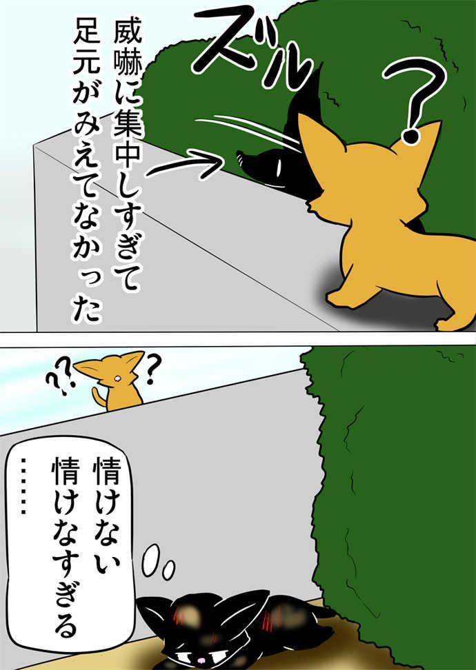 ミーのおもちゃ箱584話~第589話