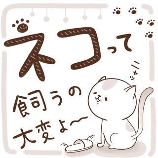 猫って飼うの大変よ〜