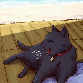 黒猫さんの休日