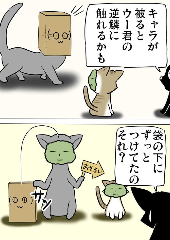 ミーのおもちゃ箱572話~第577話