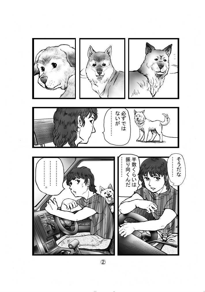 犬に関する考察