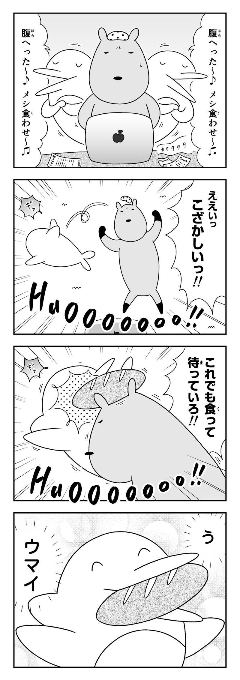 イルカにパン