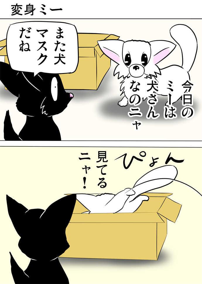 ミーのおもちゃ箱394話