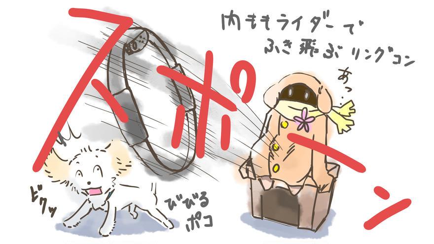 犬とリングフィットアドベンチャー③