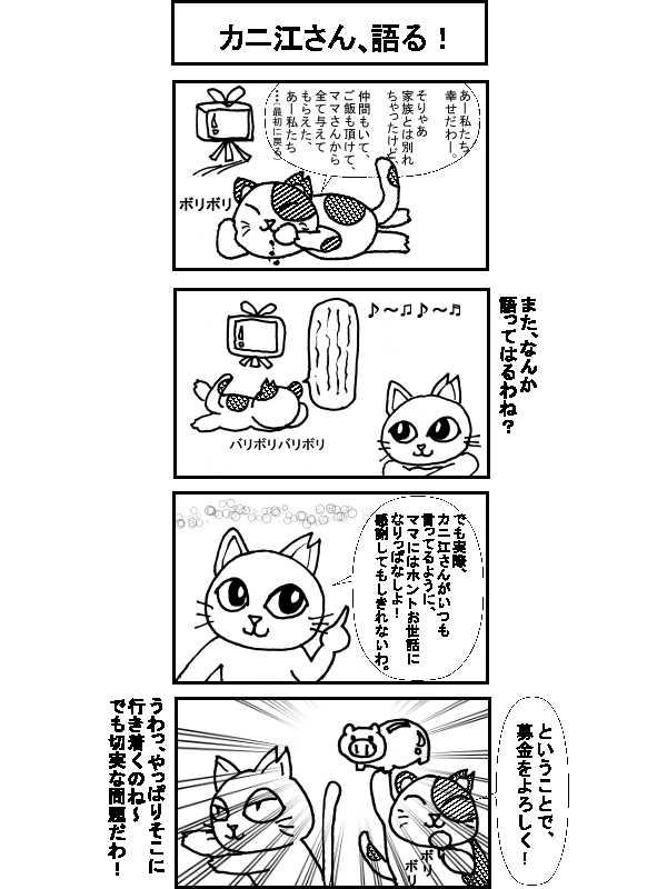 〇〇猫のなかまたち~サクラカットネコの日々 その3