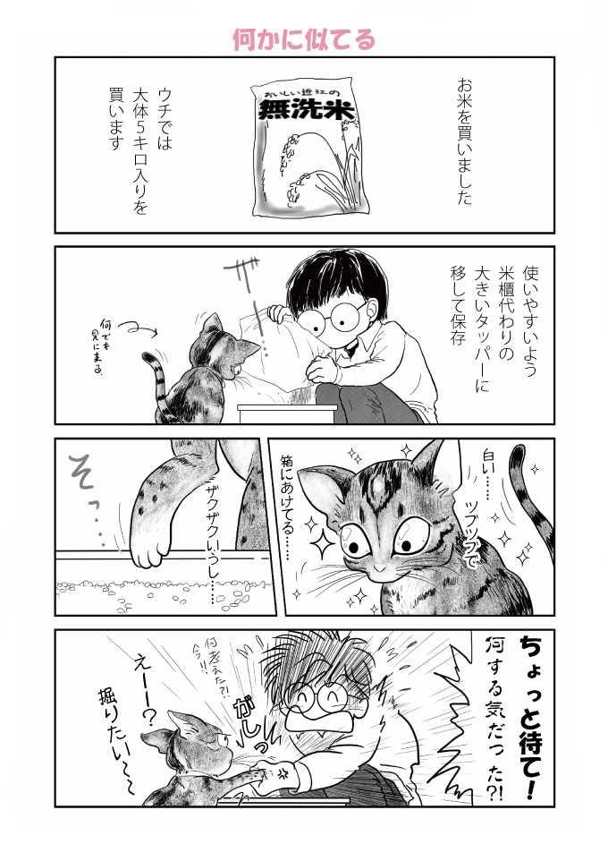 ご挨拶/怪獣日記 #1