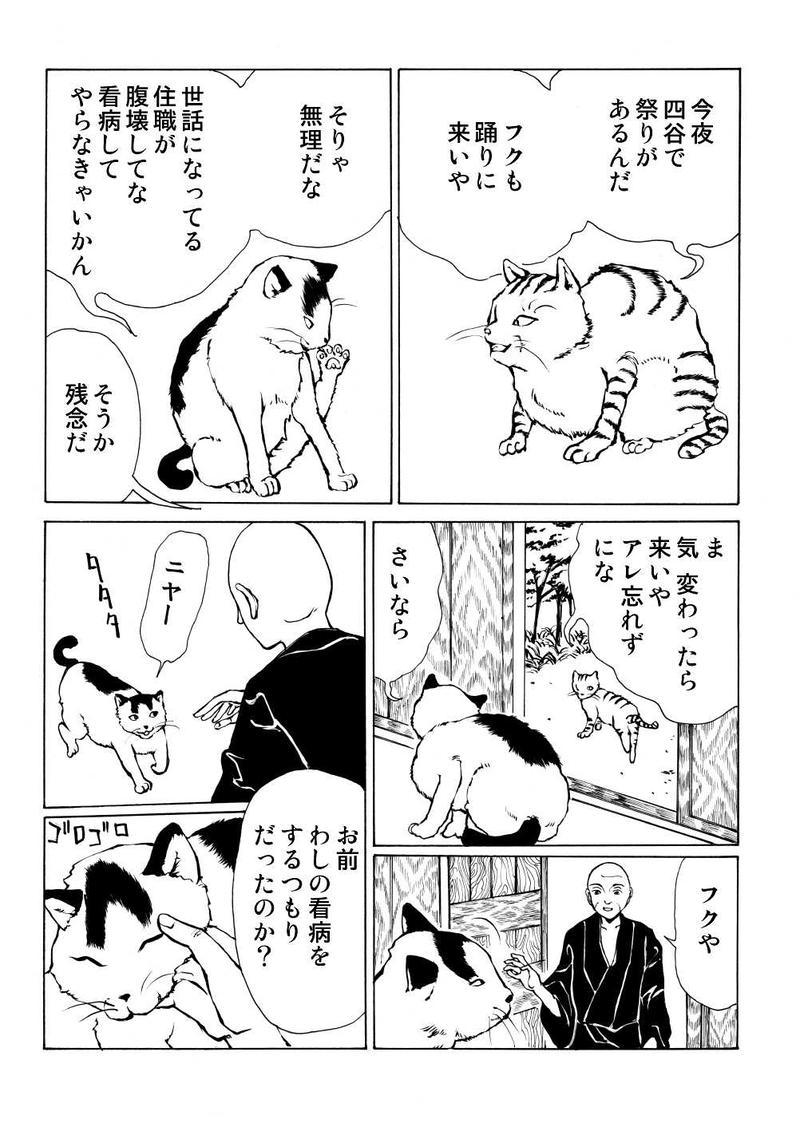 第四十七夜:住職の猫の話