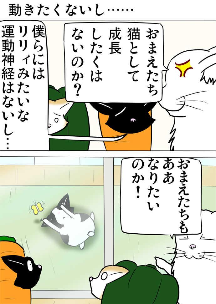 ミーのおもちゃ箱626話~第631話