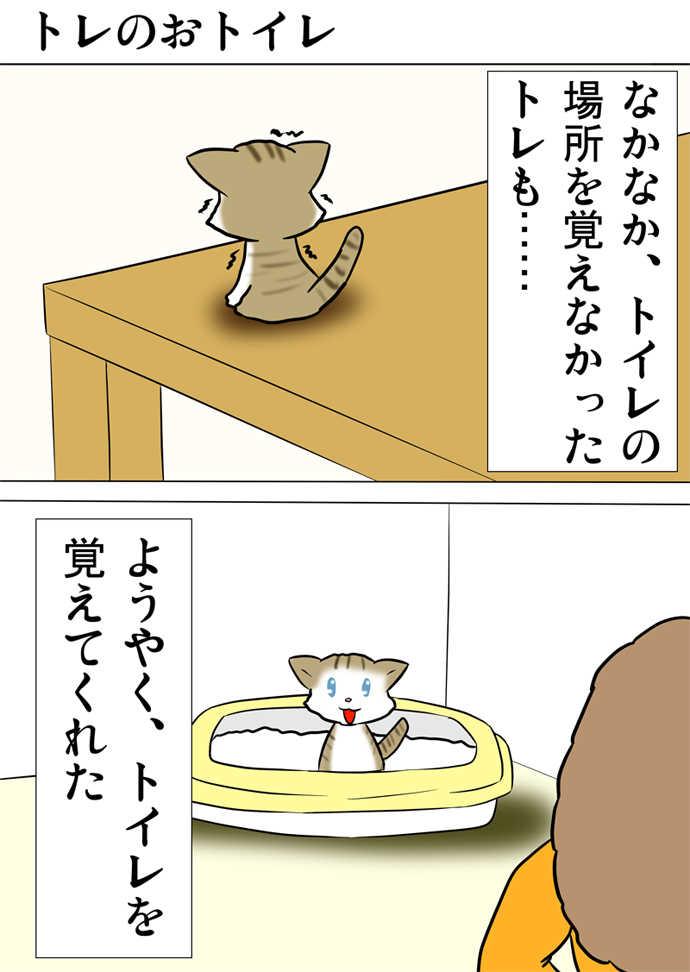 ミーのおもちゃ箱468話