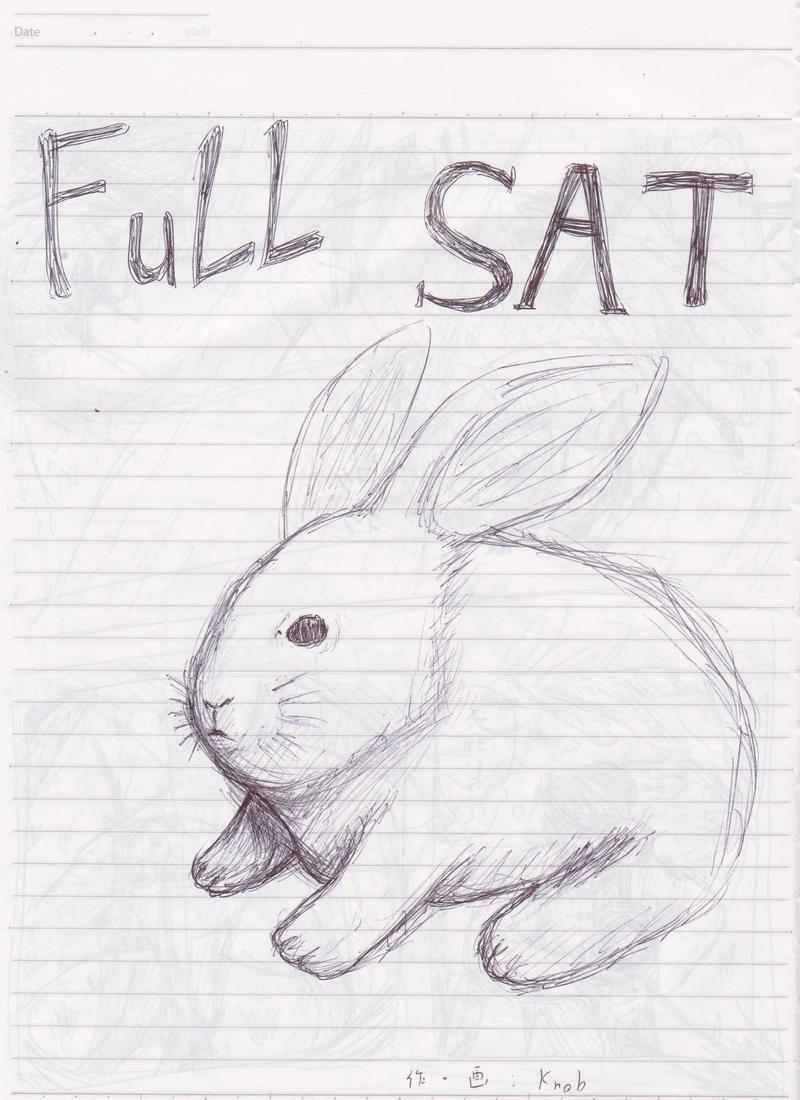 FuLL SAT
