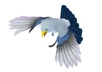 文目鳥掛巣