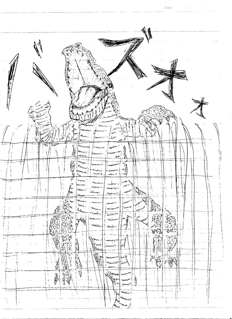 fragile Crocodile