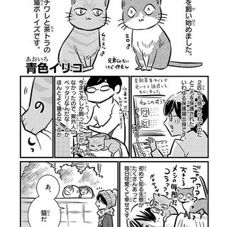 「保護猫ボーイズと私」(著者:青色イリコ)