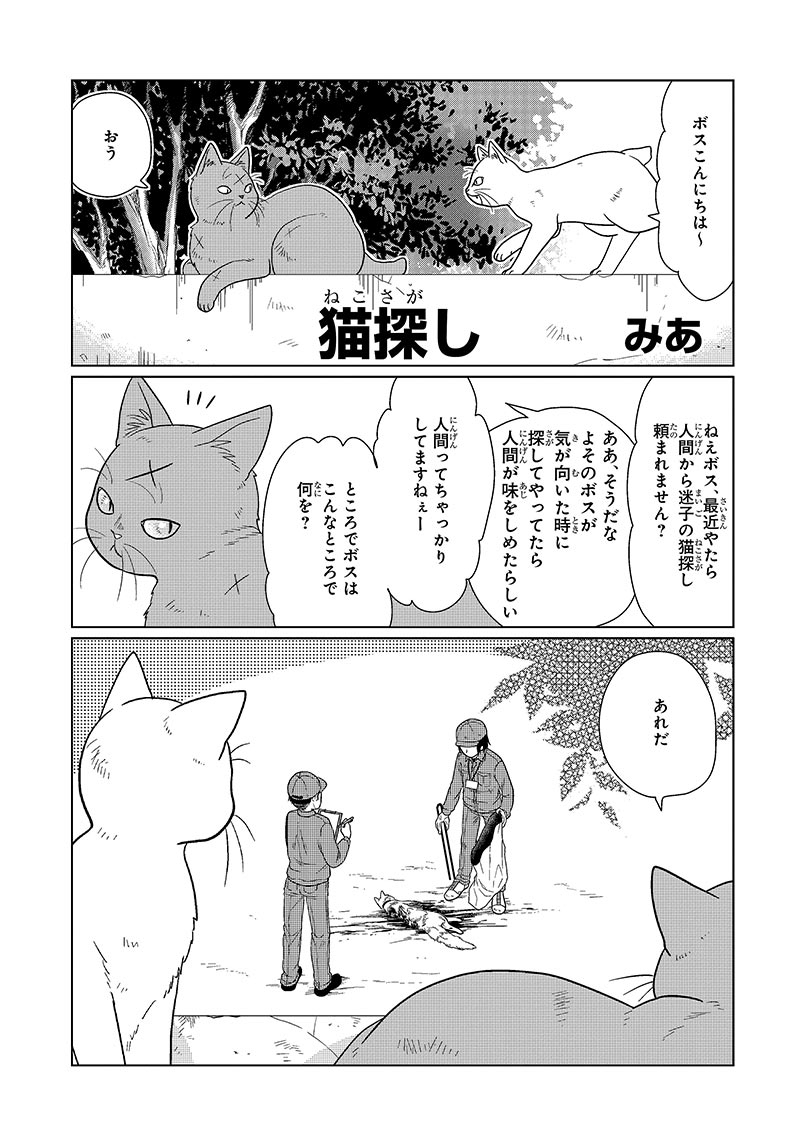 「猫探し」(著者:みあ)
