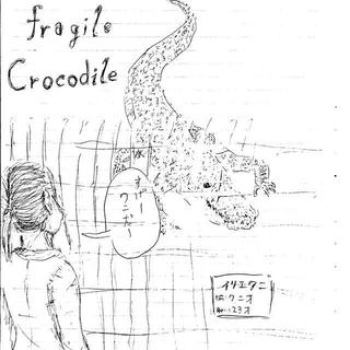 fragile Crocodile