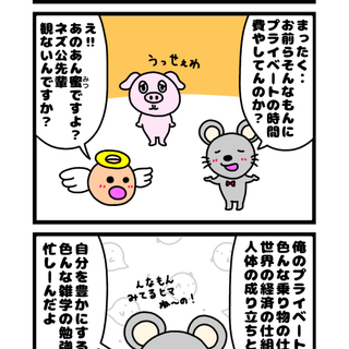 ◯蜜のDVD