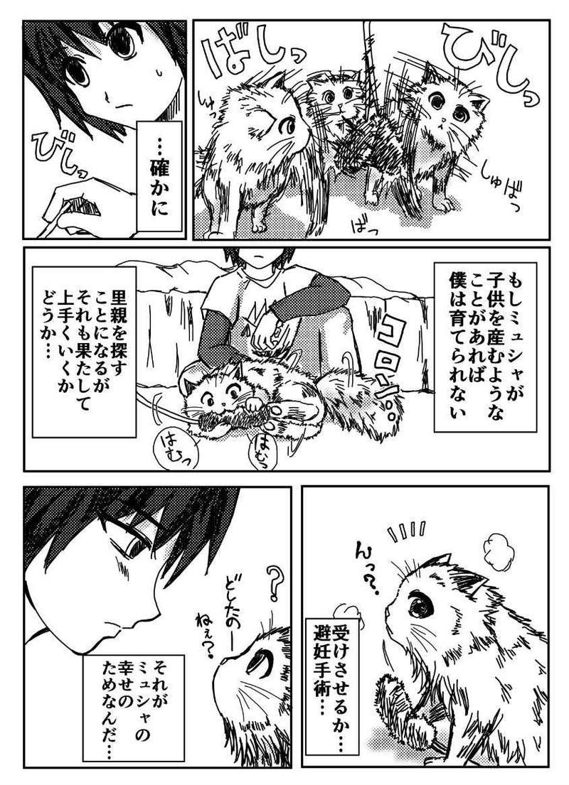 愛と復讐のネコ 第1話