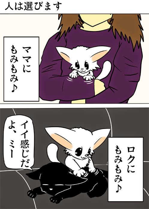 ミーのおもちゃ箱159話